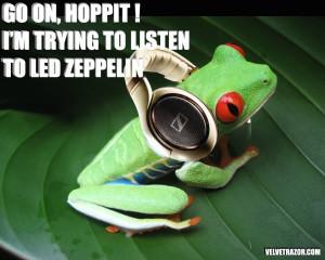 Led Zepp Frog