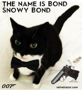 SnowyBond